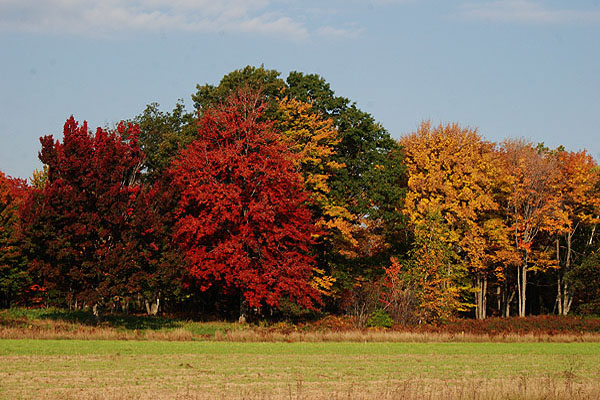 September and Octobe Fall Color Show